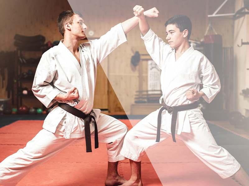 Videopic3, Prestige Sport Martial Arts