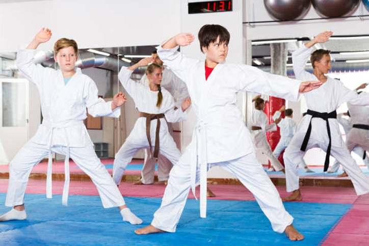 Teen2, Prestige Sport Martial Arts
